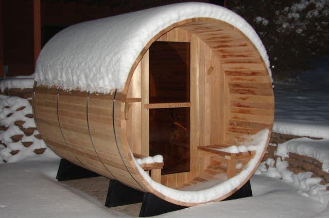 Dspas Canopy Snow 2