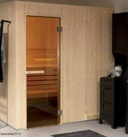 sauna-evolve